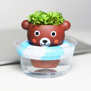 Floating Cute Planter  水上漂可爱盆栽
