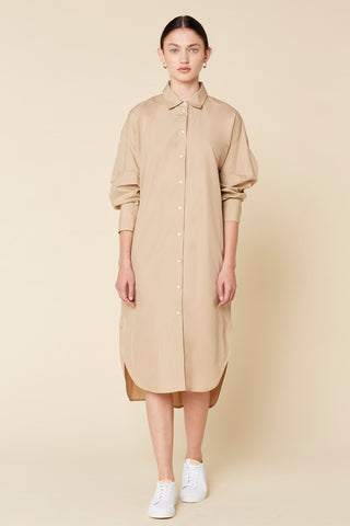 Carter Cotton Shirtdress