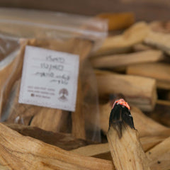 Palo Santo - Natural Wood Incense from Peru - Wild Matter Arts