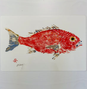Fishaye Placemats