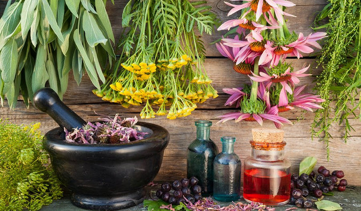 A Closer Look at India's Third Most Popular Medical Treatment: Homeopathy
