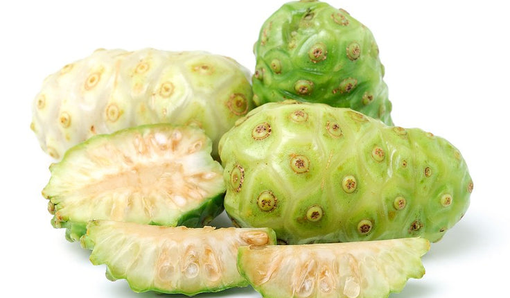 The Research is In on NONI: Traditional and Modern Uses