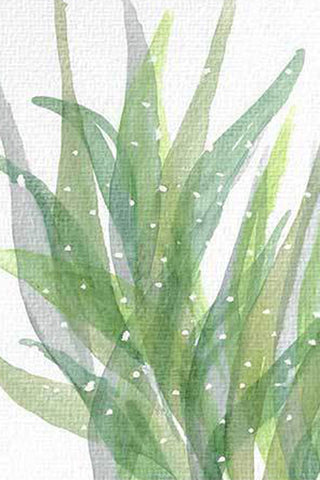 """Succulent Leaves"" - Botanical Original Painting"