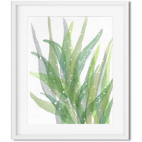 botanical print - watercolor succulent print - succulent watercolor print - flavia bernardes art