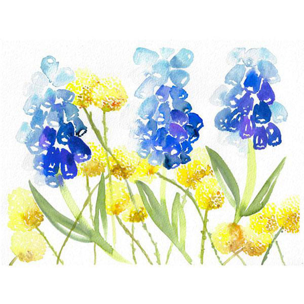 Muscari Craspedia Play - Original Watercolor Floral Painting