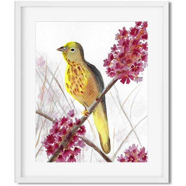 watercolor original art - yellow bird sitting on a branch with pink flowers - flavia bernardes art