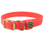 Water Dog Collar-Blaze Orange