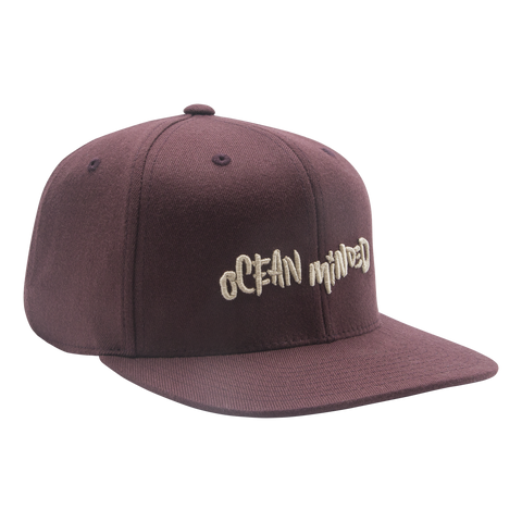 The Get Vertical - Snapback