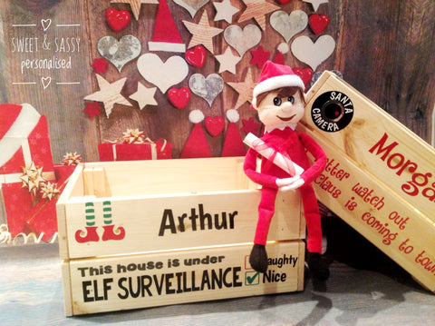 ELF SURVEILLANCE CHRISTMAS CRATE