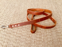 Hollis Leather Dog Leash