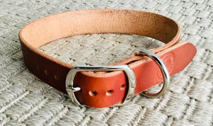 Hollis Leather Dog Collar