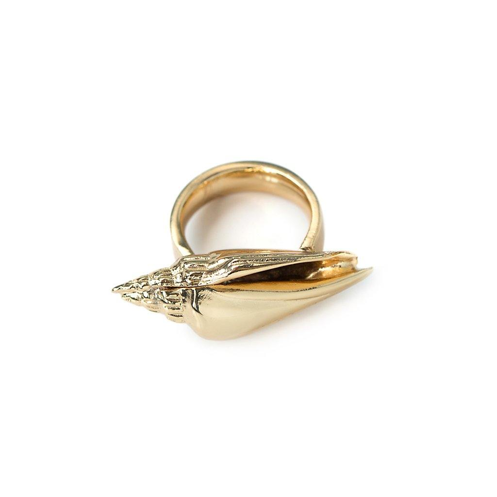 CONCHA COLUBRA SHELL RING IN GOLD - Tohum Design