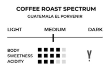 Guatemala - El Porvenir Natural - Yield Coffee Roasters