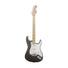 Fender Artist Eric Clapton Stratocaster Guitar, Maple Neck, Pewter