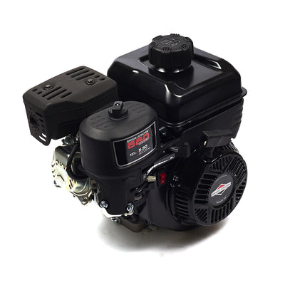 Briggs & Stratton 83132-1035-F1 | 550 Series Gas Engine