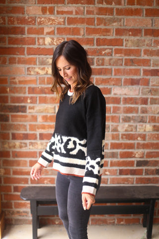 Jaden Animal Print Color Block Sweater