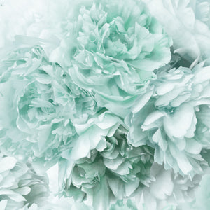 Mint Green Peony Cushion