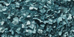 Dusty Green Hydrangea Mural Wallpaper
