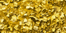 Gold Hydrangea Wallpaper