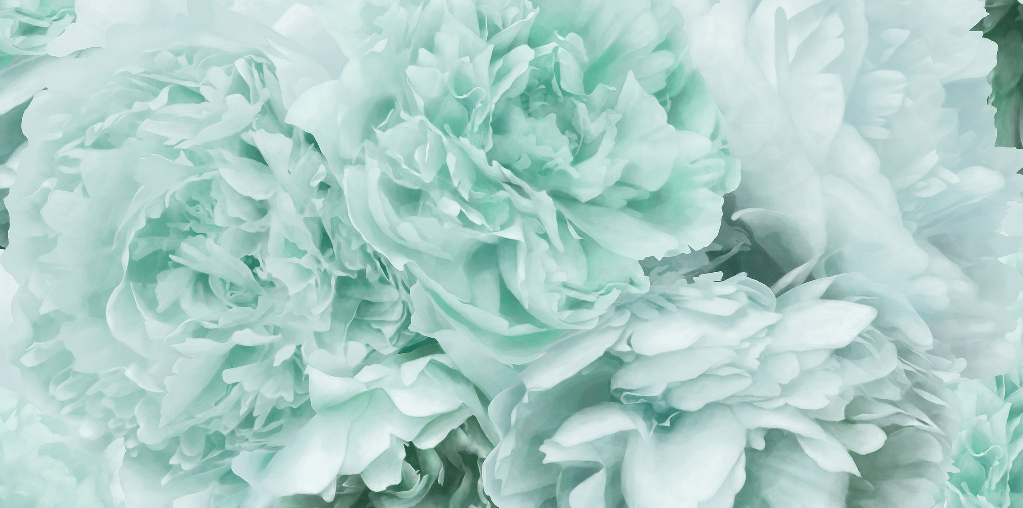Mint Green Peony Wallpaper