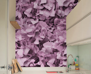 Dusty Pink Hydrangea Mural Wallpaper
