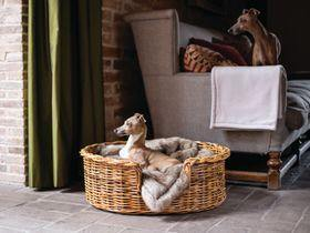 Bring The Outdoors In With Lush Bedding For Your Four-Legged Friend From Charley Chau