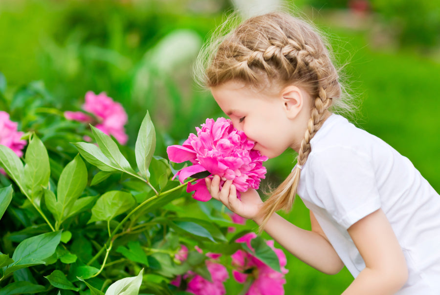 Why do flowers smell?