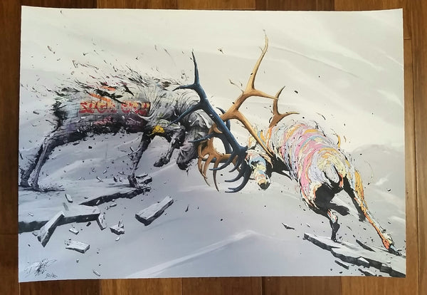 Cerfs Volants by Brusk DMV