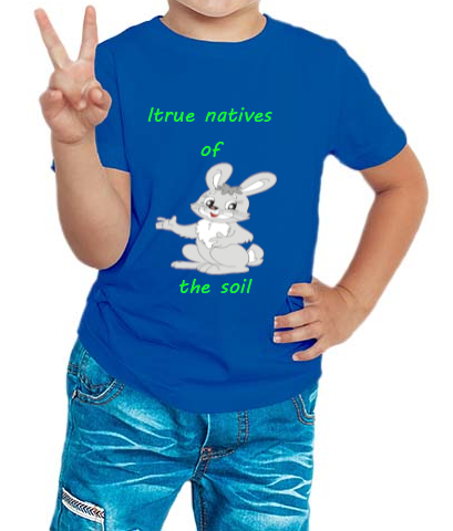 Boy's T-shirt Rabit Printed Blue