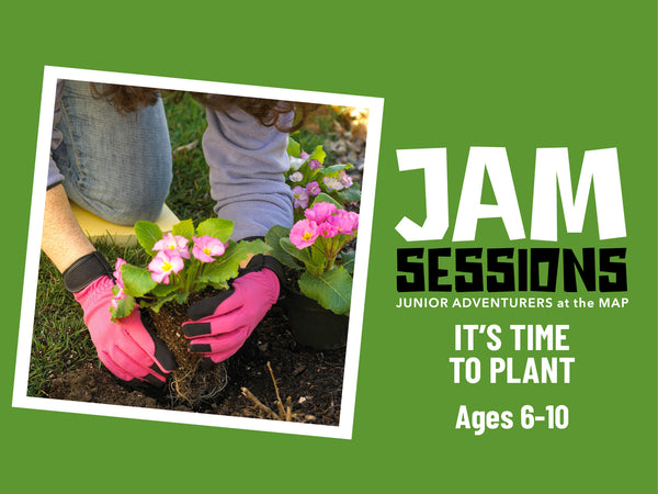 Home at the MAP: JAM Session + Colorful Flowers (It's Time to Plant)