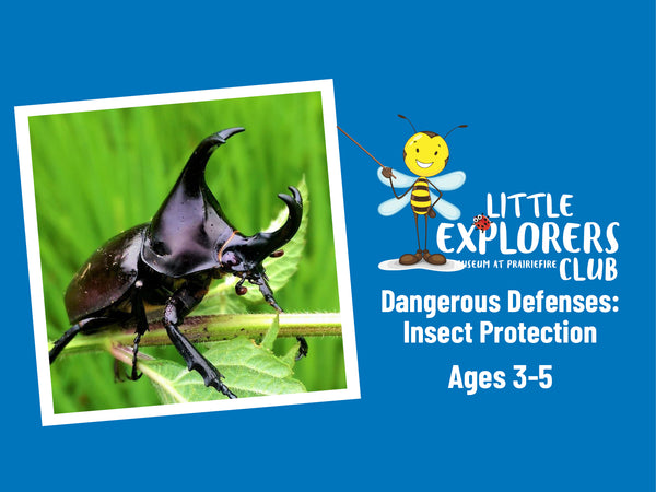 Little Explorers Club + Dangerous Defenses: Insect Protection