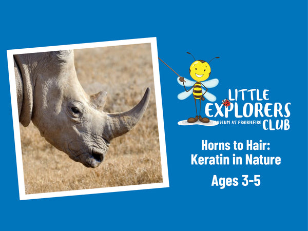 Little Explorers Club + Horns to Hair: Keratin in Nature