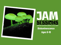 Home at the MAP: JAM Session + Bioluminescence