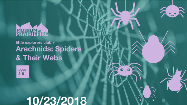 Little Explorers Club + Arachnids: Spiders and Their Webs