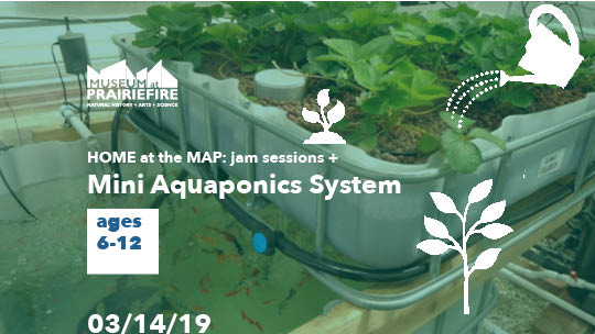 Home at the MAP: JAM Session + Mini Aquaponics System