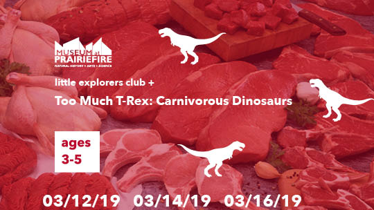 Little Explorers Club + Too Much T-Rex: Carnivorous Dinosaurs