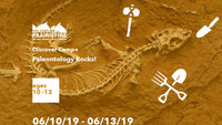 Paleontology Rocks! Summer Camp 2019