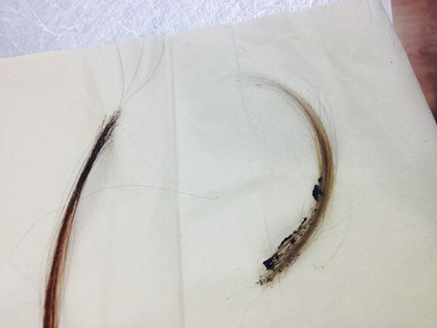 the burn test is a good way to know if your hair extensions are human and not synthetic fibers as well.