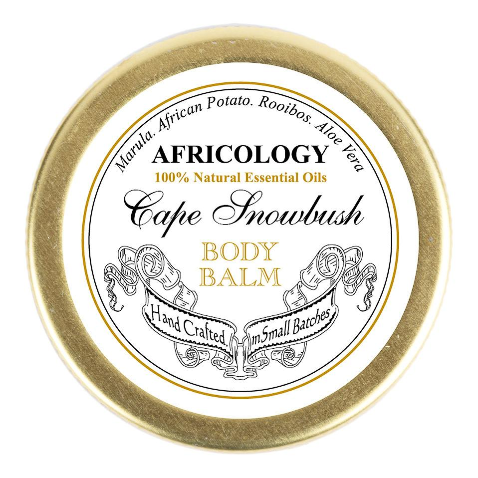 Cape Snow Bush Body Balm - Africology