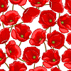 Red Poppies on White Logo