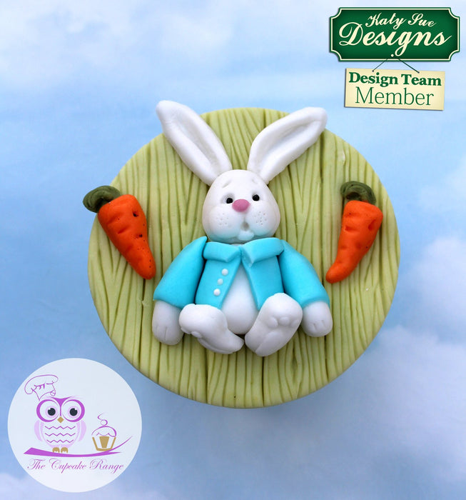 CD - An idea using the Rabbit Sugar Buttons Silicone Mould product