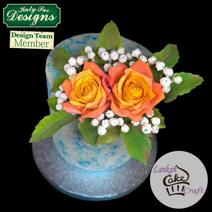 CD - Rose Cones and Thorns