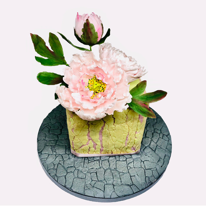 CD - Peony / Tulip Mould and Veiner