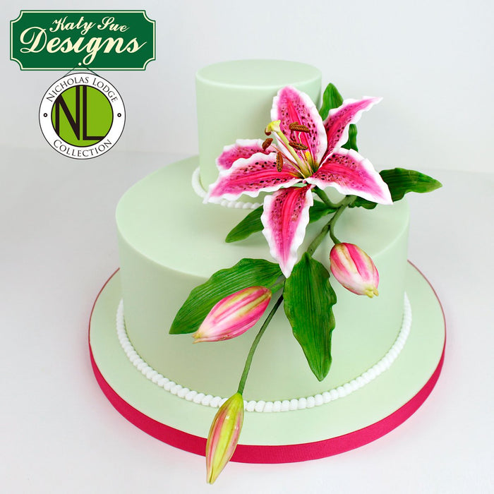 CD - Cake Idea using the Flower Pro Lily Mould and Veiner