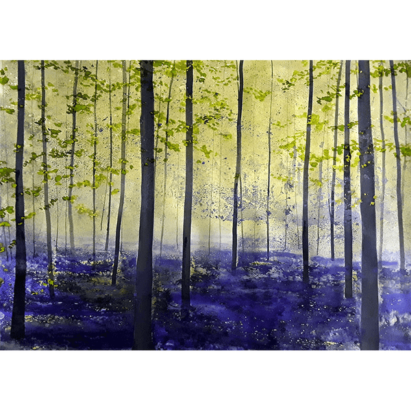 Bluebell misty view