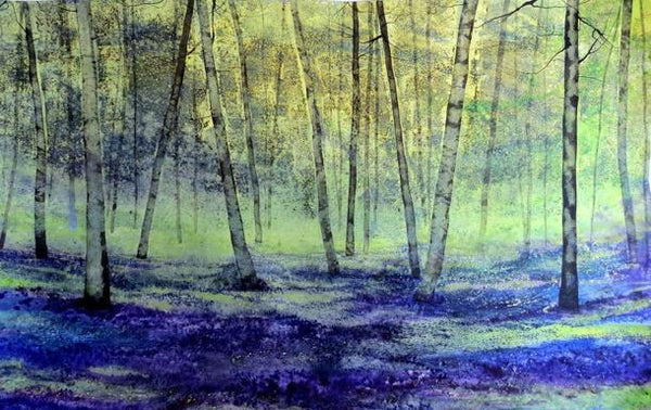 Bluebells morning mist