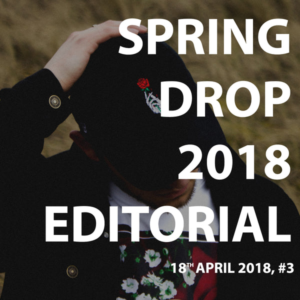 Spring 2018 Editorial (Journal #3)