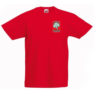 St Aelred Men's T-shirt
