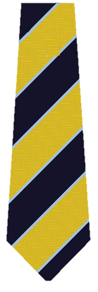 Guiseley School Clip on Tie (KS3 & KS4)