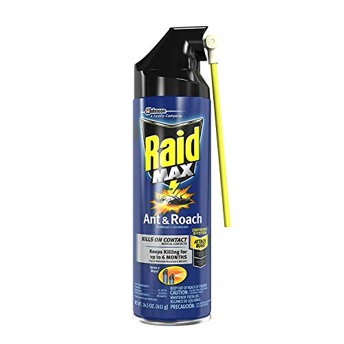 Raid Max roach insect killer aerosol spray on bugs - 14.5 oz